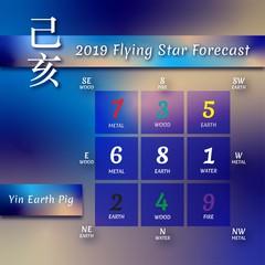 """alt"""" estrellas voladoras 2019"""""""