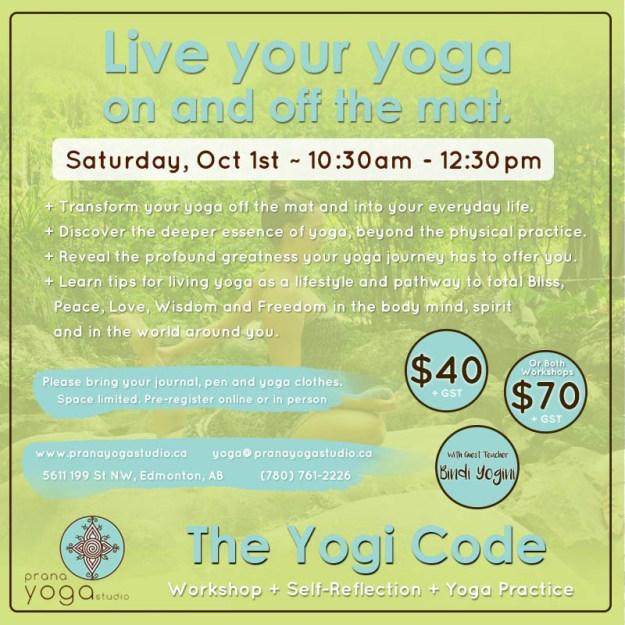 pys_yogi_code_social