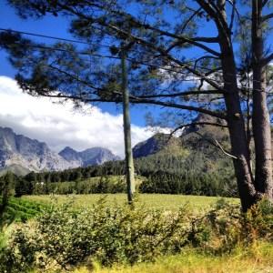 bindupowercoaching.com Foto Tesitmonios