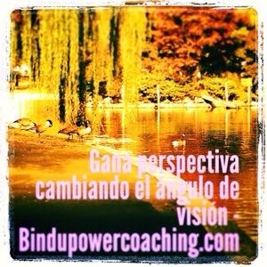 perspectiva con visión