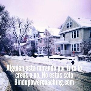 Bindu Power Coaching