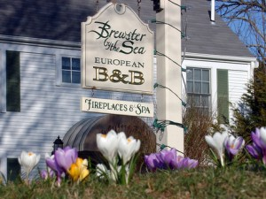 Brewster by the Sea Inn and Spa, Brewster, Cape Cod