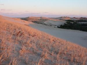 Art's Dune Tours, Provincetown, Cape Cod