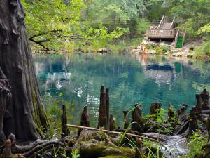 Swimmer at Royal Springs, Natural North Florida