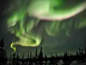 Yukon, Northwest Territories and Nunavut