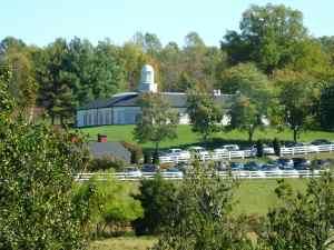 Barboursville Vineyards tasting room and pasture.