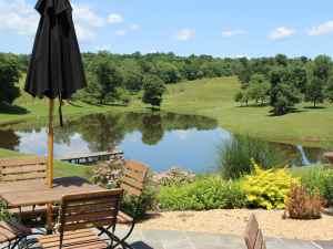 Greenhill Vineyards Pond