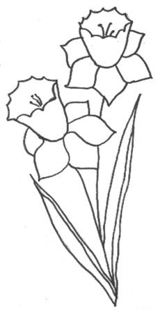 Malvorlage Narzissen Coloring and Malvorlagan