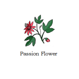 herb passion flower