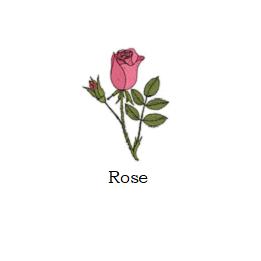 herb rose
