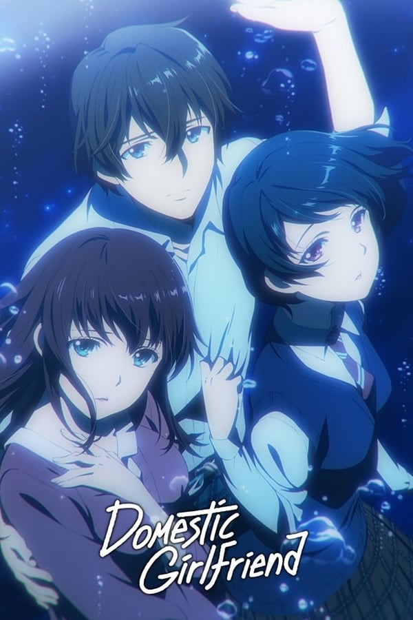 Watch Domestic na Kanojo (Dub) Online Episode List - AnimeKisa
