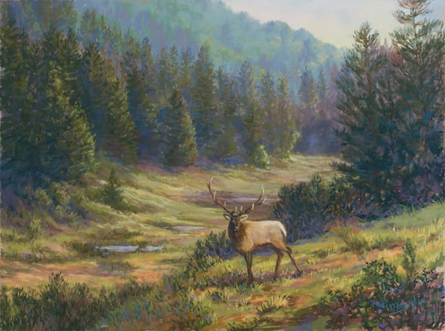 Elk Near Cloudcroft