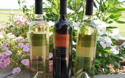 Vermentino, Dolcetto, and Viognier from Mandola Estate Winery