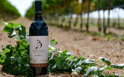 Red Wine Only Monthly Club Wine – 2016 Tempranillo