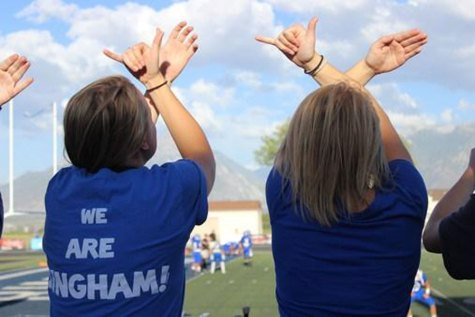 An Open Letter to Bingham