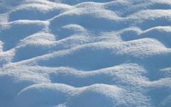 Snow or No