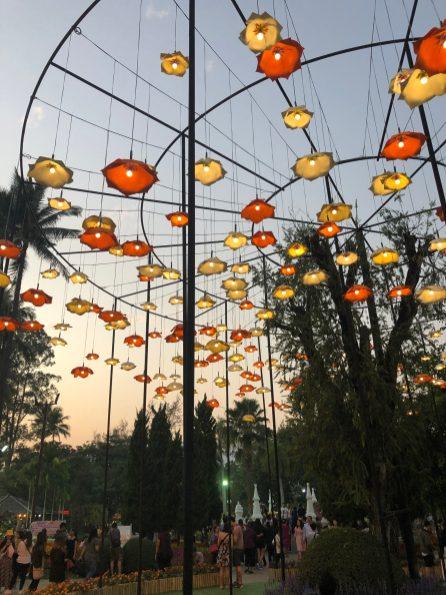 Chiang Mai 2019 (457)