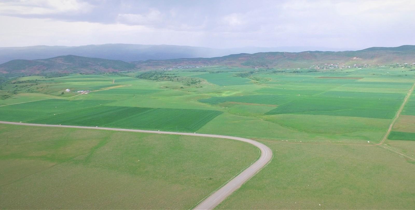 Bingöl'de bin 500 kişinin tarımsal istihdamına katkı sağlayacak projede sona gelindi