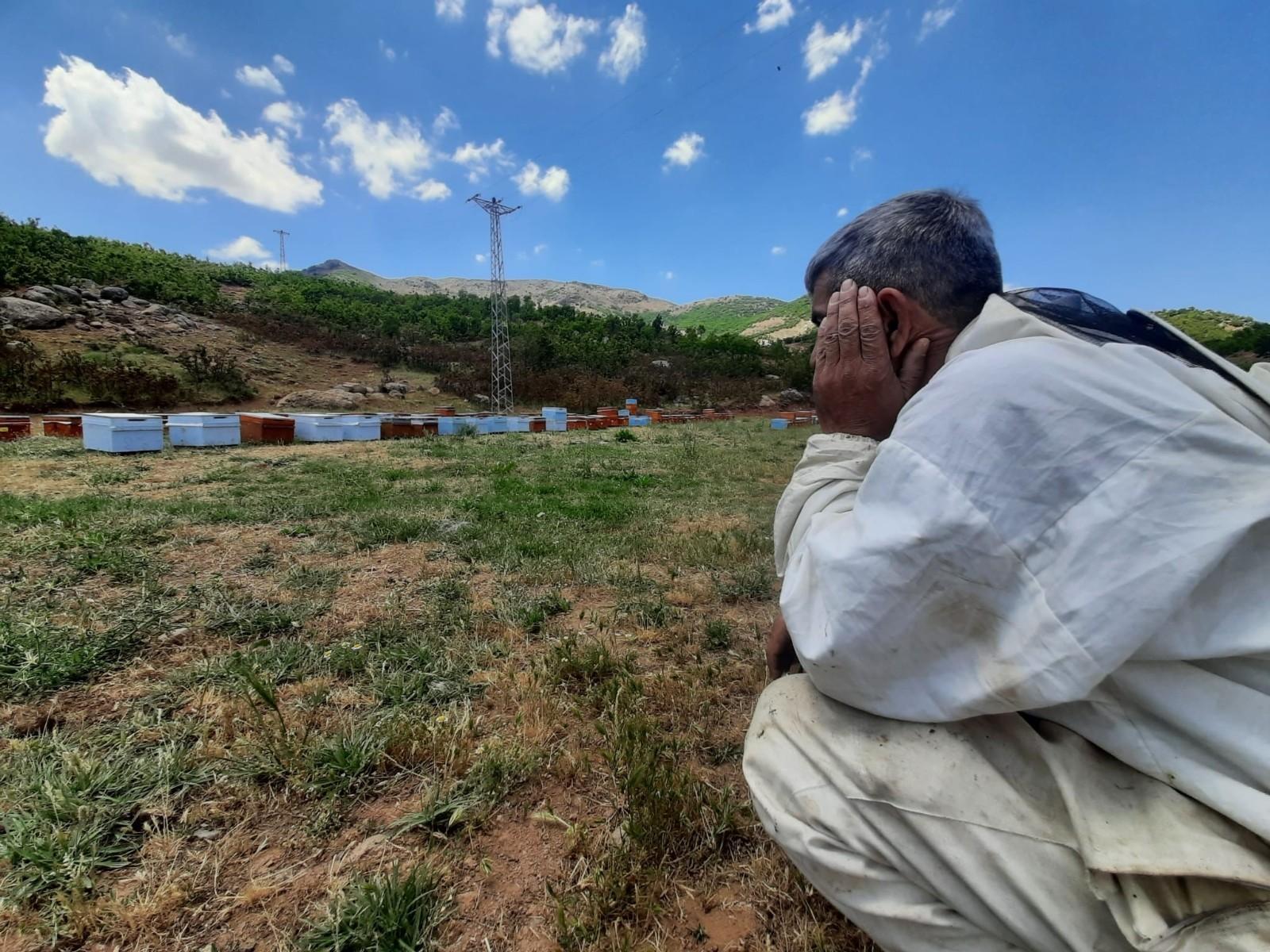 Bal şehri Bingöl'de kuraklık arıcıları da vurdu, dünya ikincisi bal tehlikeye girdi