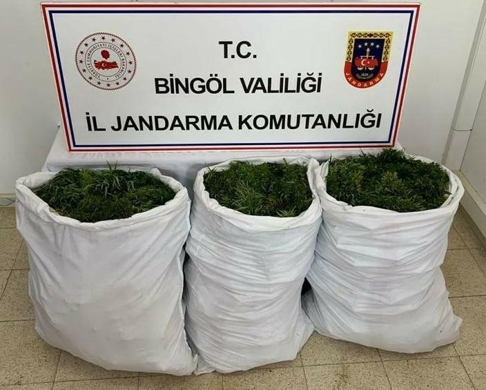 Bingöl'de 84 kilogram esrar ele geçirildi