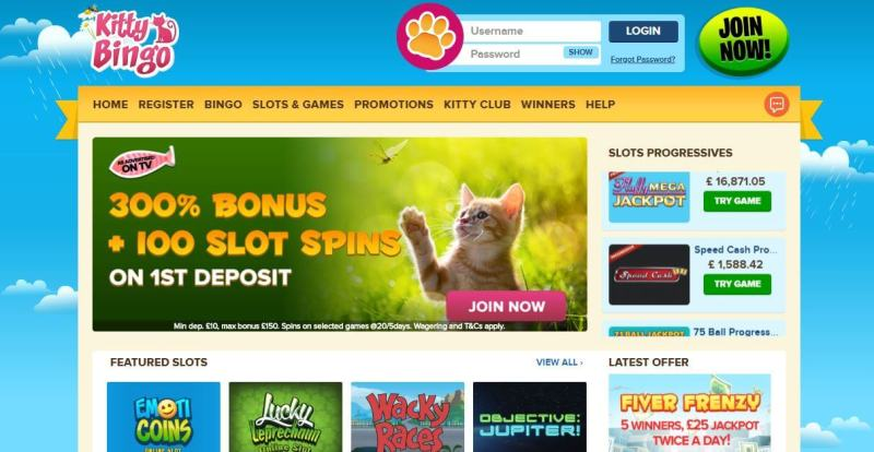Kitty Bingo's welcome page - has you guessed it.. a cat :)