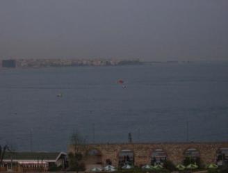 Istanbul- Delfine