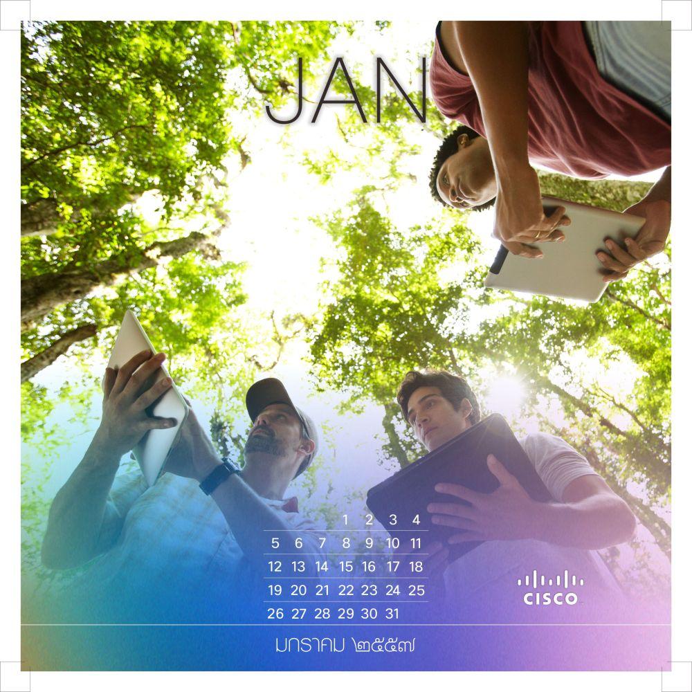 Cisco Calendar 2014 (2/6)