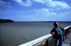 1993_Florida_09