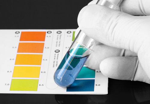 The Importance of Alkalinizing Your Body