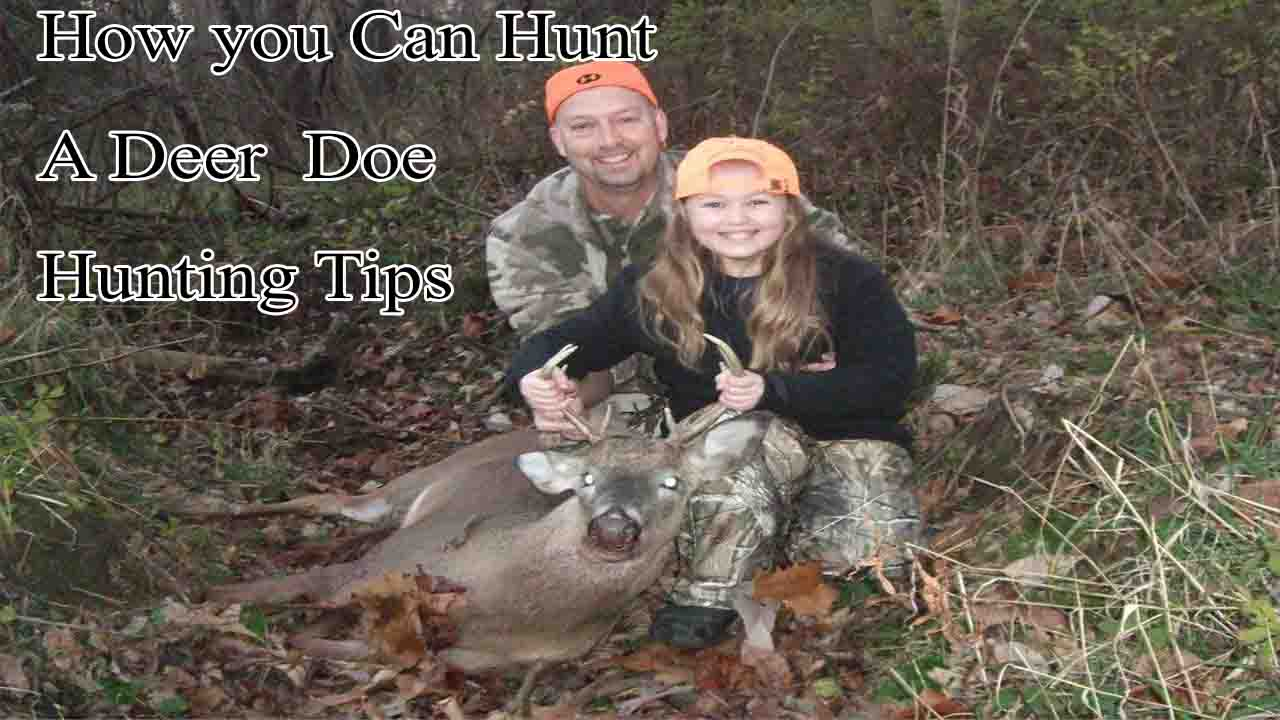 how you can hunt a deer doe hunting tips binocular advisor