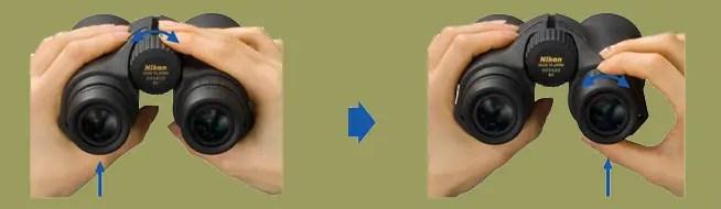 Adjusting Binoculars