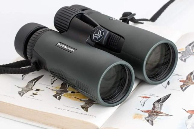 How to choose binoculars for birding
