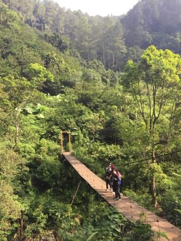 Hiking in Taman Huta Raya Juanda park