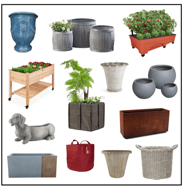 How To Choose The Best Container Garden Pot For Each Plant