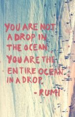 you are the entire ocean in a drop
