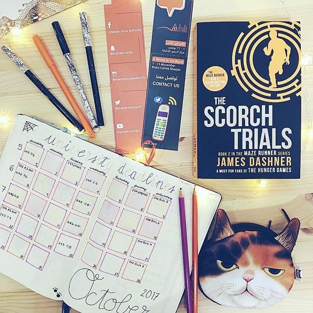 Binx Thinx About The Scorch Trials Binx Thinx