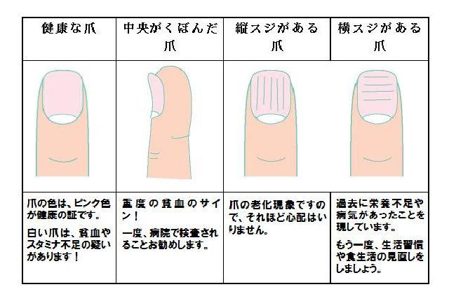 爪の健康チェック