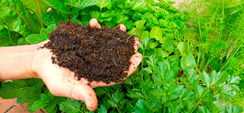 bio-crop-home-productos_52