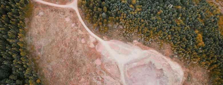 De onde podem vir os recursos financeiros para viabilizar a restauração florestal?