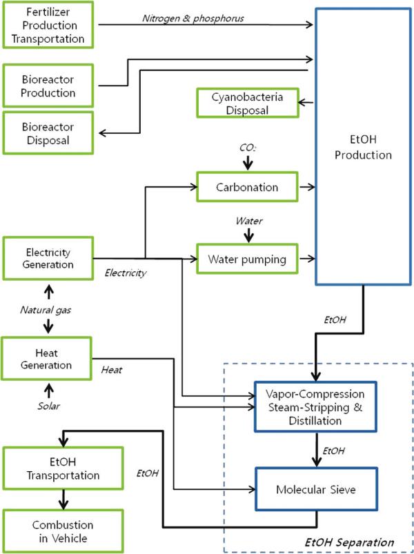 Life Cycle Study Calculates Algenols Algae To Ethanol