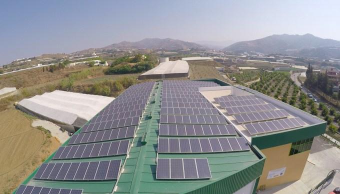 Placas fotovoltaicas de BioAlgarrobo