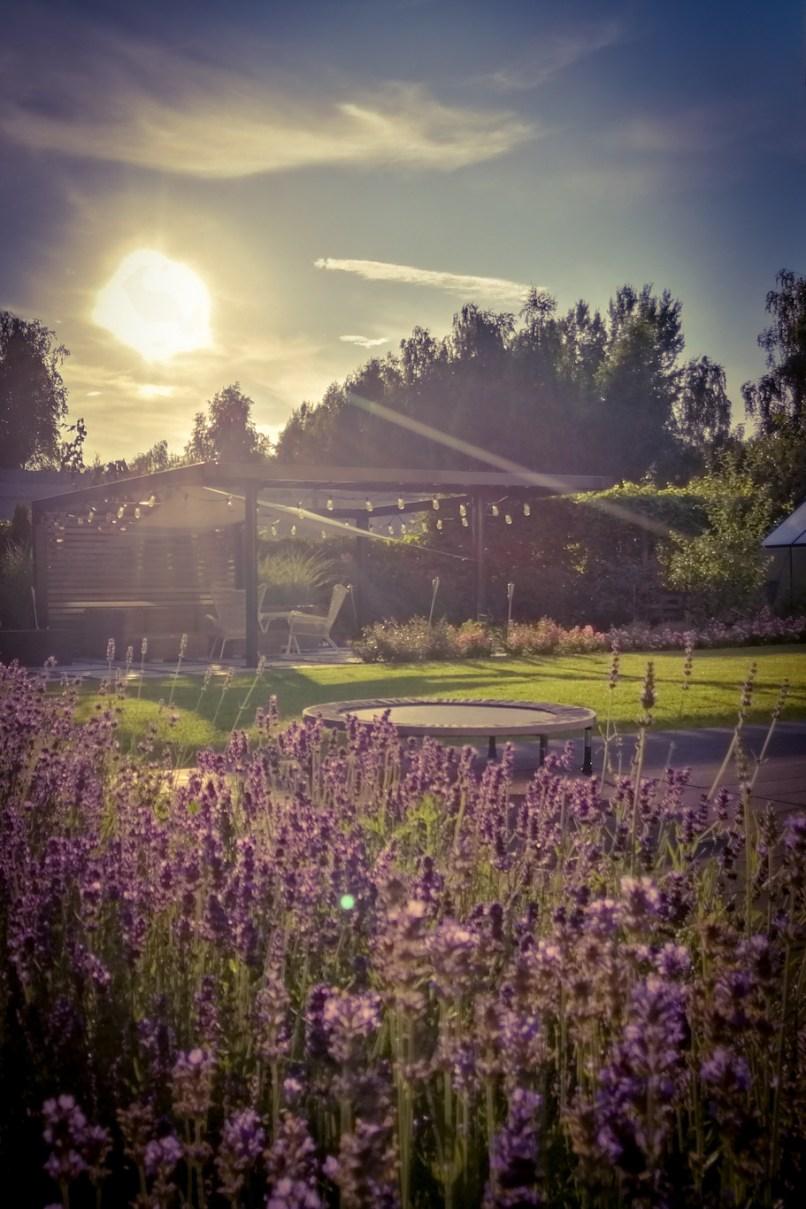 projektowanie ogrodów pruszków