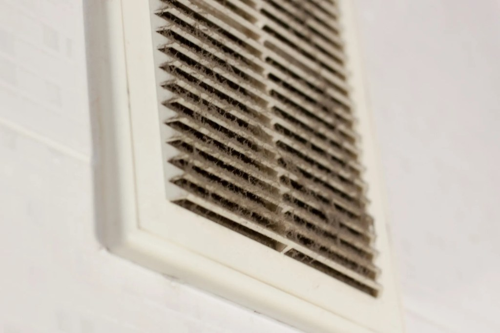 HVAC Systems and Mold