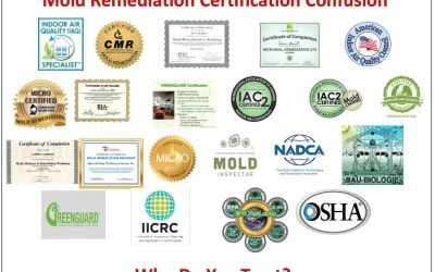 Why is the Process for Identifying a Mold Remediator so Important