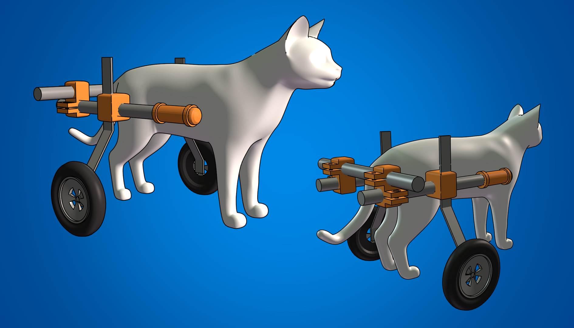 wheelchair for cats linen chair covers australia kitten wheel harness  part i bioblogical biologic 39s