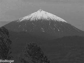 Вулкан Карисимби