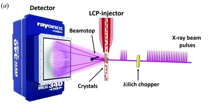 High-viscosity injector-based pink-beam serial crystallography of microcrystals at a synchrotron radiation source
