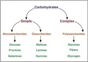 Carbohydrates – biochemtastrophy