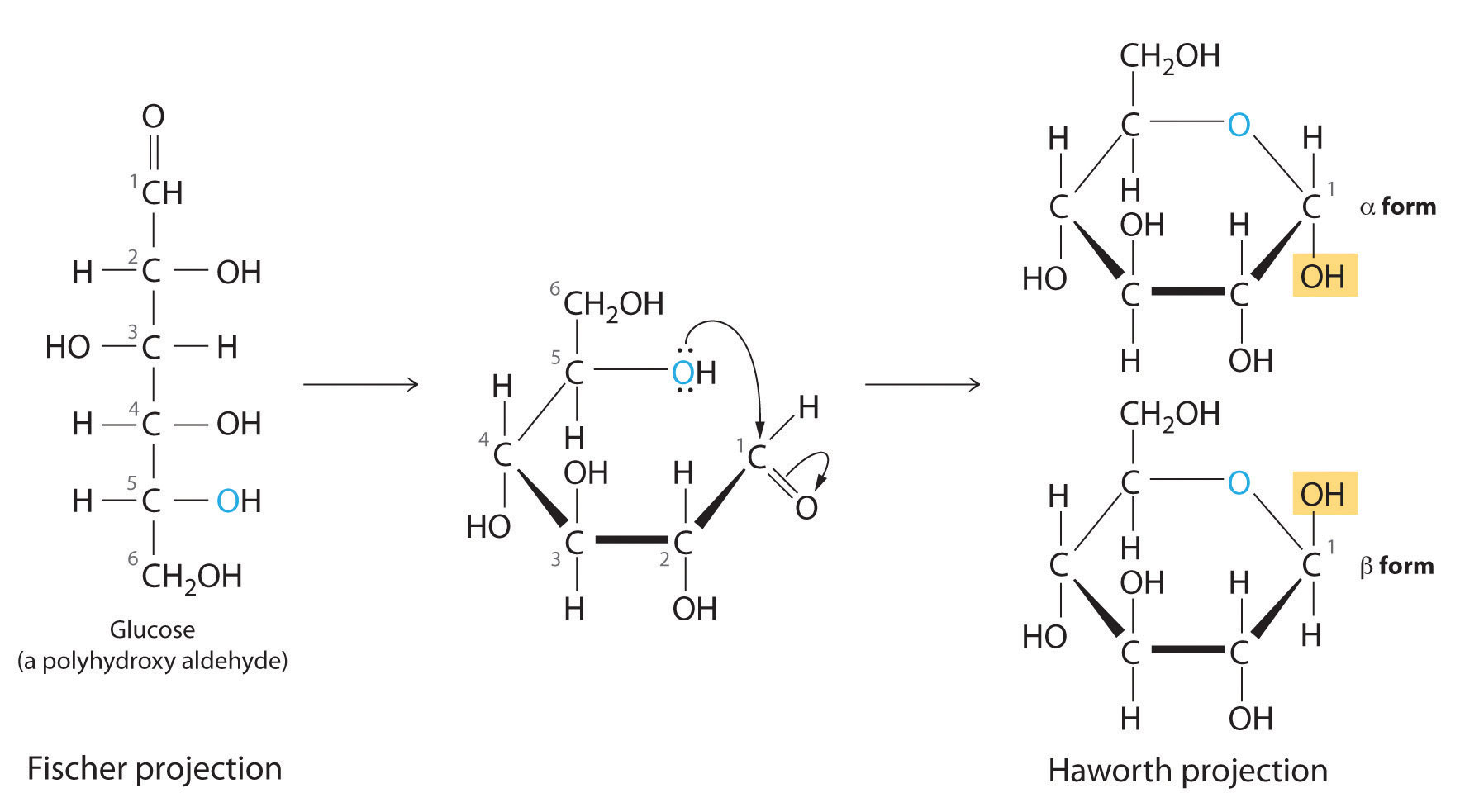 Biochemislikesocool