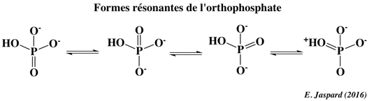 hydrolysis stabilization resonance orthophosphate Reversibilite equilibre reaction biochimique equilibrium biochemical adenosine triphosphate NAD NADP free enthalpy energy energie libre Gibbs coenzyme biochimej